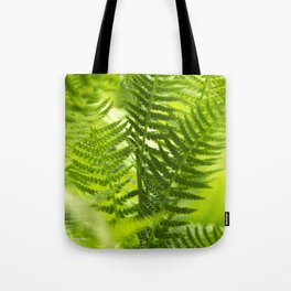 Green Fern Abstract Tote Bag