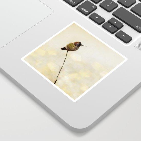 Hummingbird by mscottphotography