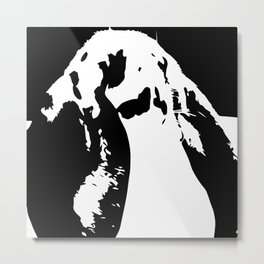 Black & White English Lop Metal Print