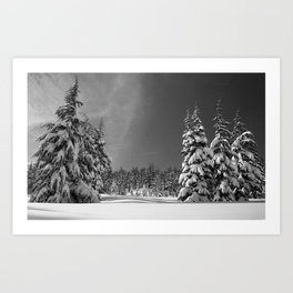 Black and White Winter Wonderland Art Print