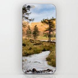 Lake District landscape iPhone Skin