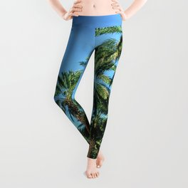 Date Palm Trees Leggings