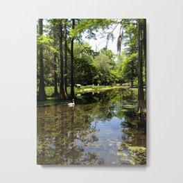 Iris Lake Metal Print