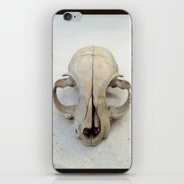 Skully's Stare iPhone Skin