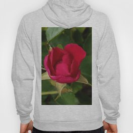 Tiny Rose Square Hoody