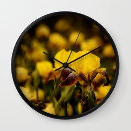 Yellow and Maroon Irisis Wall Clock