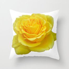 Beautiful Yellow Rose Closeup Isolated on White Throw Pillow