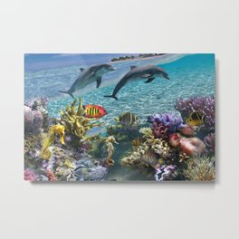 Coral Reef and Dolphins Metal Print