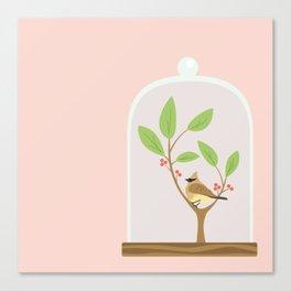 Taxidermy Bird Canvas Print