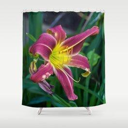Purple Lily SRF 17-5809 Shower Curtain