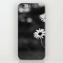 Through the daisies iPhone Skin