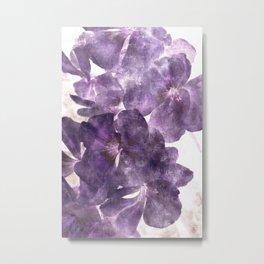 Purple Blossoming Metal Print