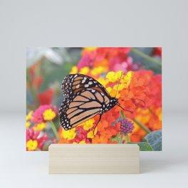 Monarch Feeding on Lantana Mini Art Print