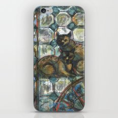Cats in the patio. iPhone & iPod Skin