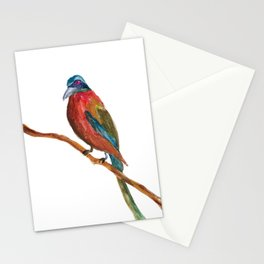 Study of a Bird 2 Stationery Cards