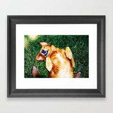 Playful Pup Framed Art Print