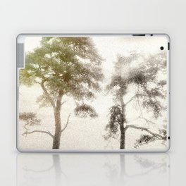 Peace before the Storm Laptop & iPad Skin