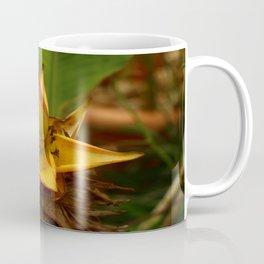 Musella Lasiocarpa - A Drawf Banana Coffee Mug