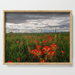 Brighten the Day - Indian Paintbrush Wildflowers in Eastern Oklahoma Serving Tray
