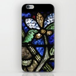 St. Denis Stained Glass 1 iPhone Skin