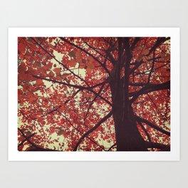 color of the season Art Print
