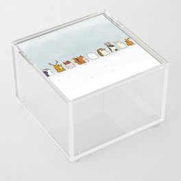 Winter forest animals Acrylic Box