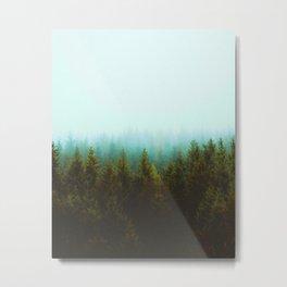 Mont Saint Rinaud Metal Print