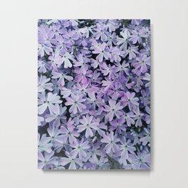 Flores de cor lilas Metal Print
