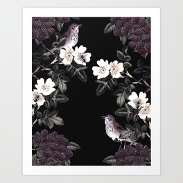 Blackberry Spring Garden Night - Birds and Bees on Black Art Print