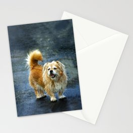 Small dog on the street Stationery Cards