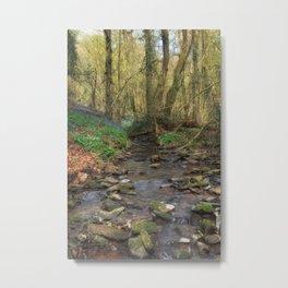 Plummers Brook Metal Print