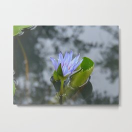 Coming Out Metal Print