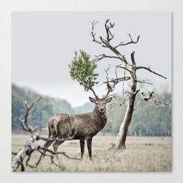 Mystical Deer Canvas Print
