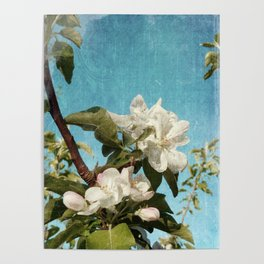 French Blossoms Poster