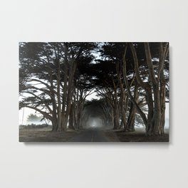 Moody Mornings Metal Print