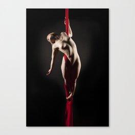 Grace - Silks Series 1 Canvas Print