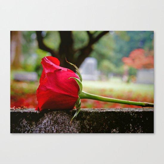 Cemetery rose Canvas Print