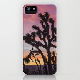 Colorful Sunset in Joshua Tree National Park iPhone Case