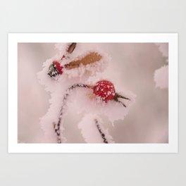 Rosehip Frozen in Frost Art Print