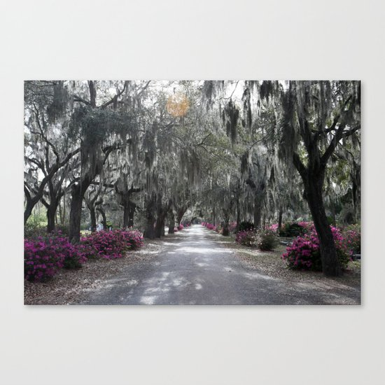 For The Glory Canvas Print