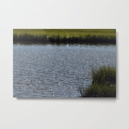 Natures Treasure New Jersey Marshland Addition Metal Print