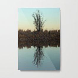 Wonderland Reflection Metal Print