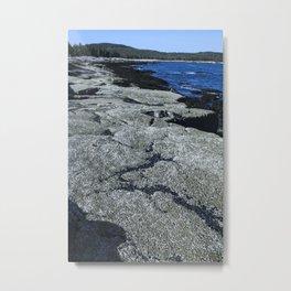 Barnacle Rocks at Acadia Metal Print