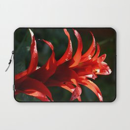 Red is Love Laptop Sleeve