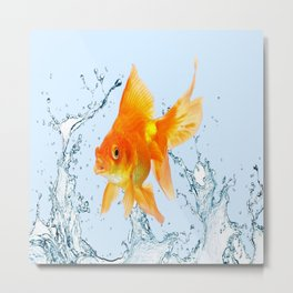 JUMPING  GOLDFISH SPLASHING  WATER ART Metal Print