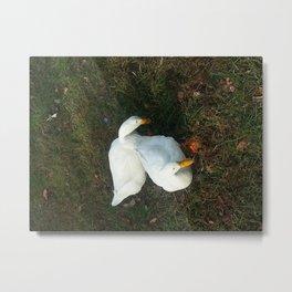Surrealist Ducks Metal Print