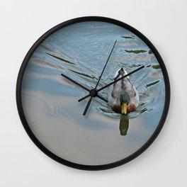 Mallard duck swimming in a turquoise lake 2 Wall Clock