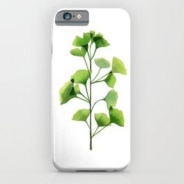 Ginkgo biloba leaves iPhone Case