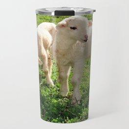Spring Lambs Grazing On Farmland Travel Mug