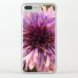 Wildflower Sunsets #8 Clear iPhone Case